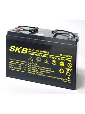 Battery  SKB SK12-120S(F11) Agm