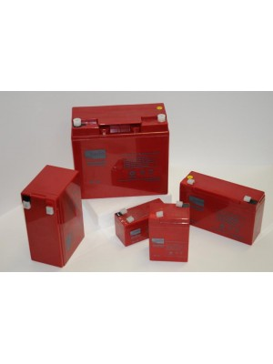 Agm Battery ZGL060024