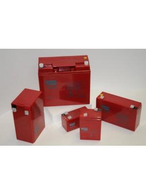 Agm Battery ZGL120096