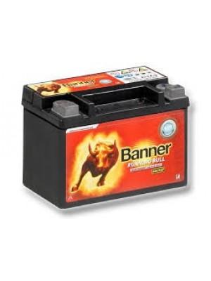 Batterie Back up Banner 50900