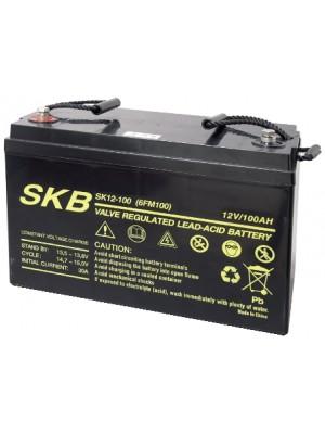 Battery  SKB SK12-100(F12) Agm