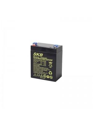 Battery  SKB SK12-2.9(F1) Agm